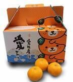この食感まるでゼリー?熟練した農家が育てた柑橘王国愛媛県の限定みかん