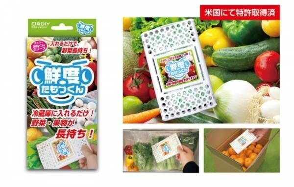 野菜高騰で家計のピンチ!「鮮度たもつくん」で野菜・果物の鮮度を保ち健康に