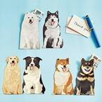 犬の「ヘッヘッヘ」を再現したポチ袋がフェリシモ「YOU+MORE!」から誕生!