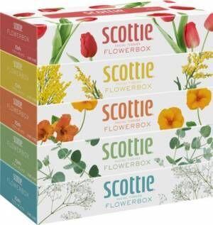 スコッティ®より花屋から花を持ち帰るようなワクワク感を。スコッティティシュー フラワーボックスが新デザインでリニューアル