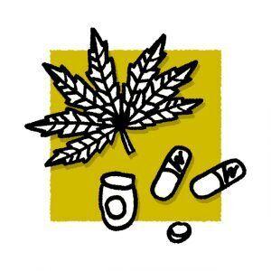 大麻以外に所持するだけで違法になるものって何がある?