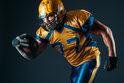 日大アメフト部員による悪質タックル…スポーツの試合で故意に相手を怪我させた場合不法行為になる?