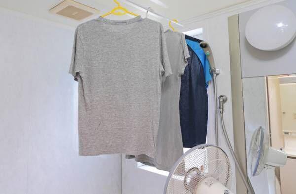【紙、湿布、紙おむつetc.】うっかり一緒に洗濯しちゃった際の正しい対処法