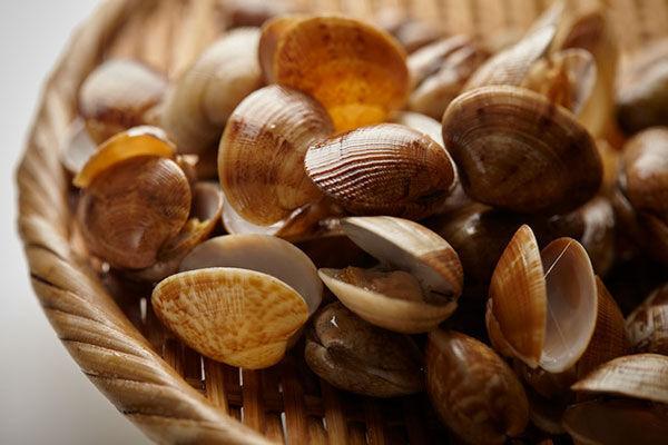 """目撃したことある?貝の中に棲む小さなカニ""""ピンノ""""食べても大丈夫?"""