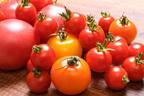 冷やしトマトだけじゃない!簡単ひんやりトマトレシピ3選