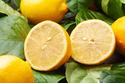 さっぱり美味! 簡単に作れるレモンスイーツレシピ