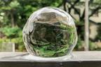 超キレイで愕然! 丸型製氷器の透明度を比較してみたら…
