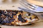 魚のコゲやコレステロールの摂り過ぎを気にする必要はない?