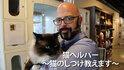 困ったときに必要なのは猫の手よりもジャクソンの手!? 猫好き必見の番組はコレ!