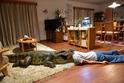 榮倉奈々、自らワニに頭突っ込む!『妻ふり』体を張ったメイキング映像