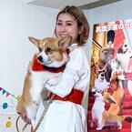 IMALU、愛犬コーギーは「家族以上の存在」