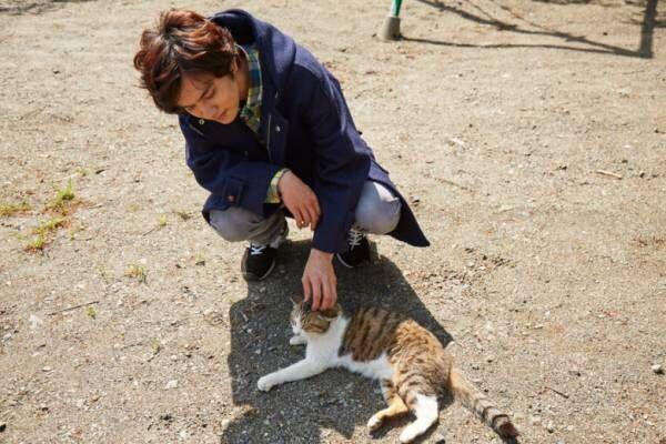 北村匠海が猫とたわむれる! 映画 『さくら』メイキングカット公開