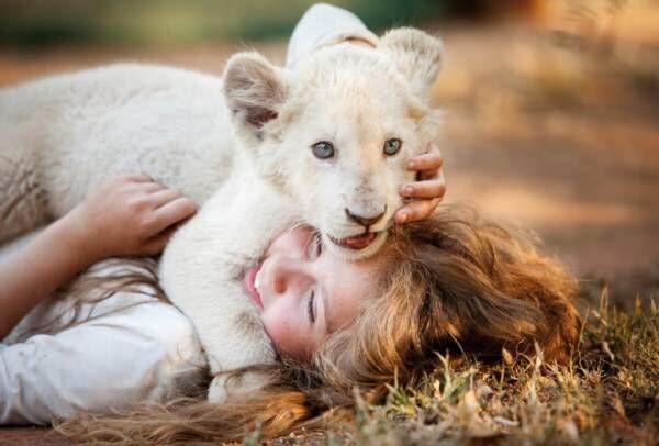 ホワイトライオンの赤ちゃんが可愛すぎる!CG抜きで撮影に3年をかけた少女との交流