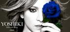 YOSHIKI「少しでもみんなの為に」とオフィシャルブログ開設