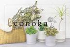 【初のライフスタイル提案型のグリーンショップ出店】LUCUA大阪に8月27日(金)OPEN!