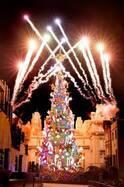 USJ、新クリスマスツリーが点灯 吉田沙保里「すごい感動!」