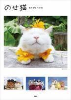 """3月に天国へ旅立った""""のせ猫""""「写真集」急上昇 これまでの思い出と仲間たちの今を収録"""
