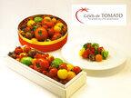 憧れのトマト専門店「Celeb de TOMATO」がお届けする、色鮮やかなフレッシュトマトをお取り寄せ!