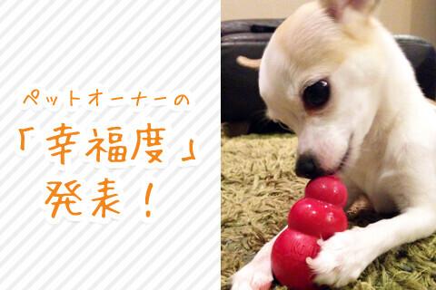 ペットオーナーの『幸福度』発表! 犬オーナー8.47点 猫オーナー8.43点 ペットに一番伝えたい言葉は「ありがとう」