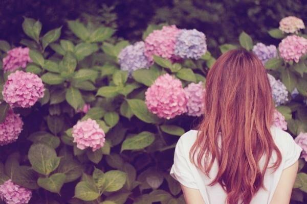 これでグンと長持ち! 紫陽花の美しい状態を長く楽しむコツ3つ