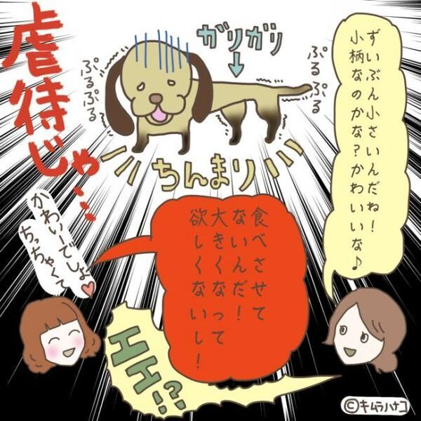 """その行為は犯罪! """"ペットの虐待""""を疑ったエピソード4選"""