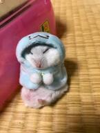 【かわいいハムスター画像】ポンチョを着てスヤスヤ眠るハムスターの寝顔に悶絶