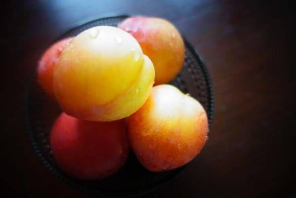 かき氷にもピッタリ! 夏の果物を使ったシロップづくりのレシピとコツ