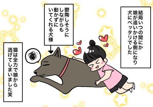 子供と犬のふれあいのおはなし │ パピマミ