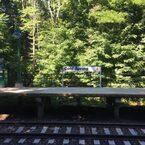 のどかな風景が広がる、コールド・スプリングへ小旅行。【My Favorite New York vol.2】