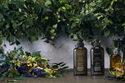 マツモトキヨシのプライベートブランド『ARGELAN』の本格オーガニックアイテムで、夏の集中ヘアケア