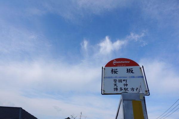 御朱印帳をもって、美味しいものに出会う旅ー福岡 その3