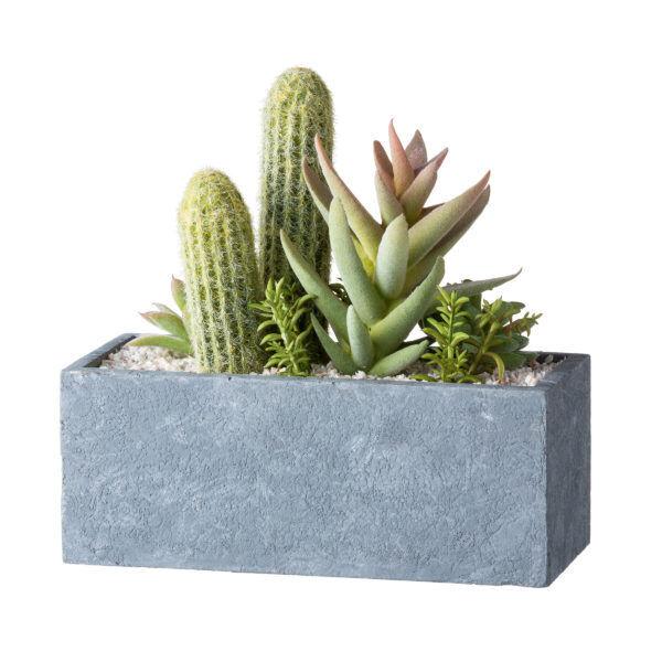 癒しのインテリア。水のいらない植物「アーティフィシャルグリーン」でお部屋をコーディネート