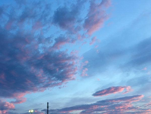 大切にしている、色のこと【Creation Column -Vol.11-】