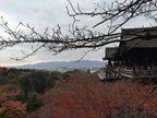 京都・大随求菩薩の胎内めぐりで心から生まれ変わる【旅の途中の神様訪問】