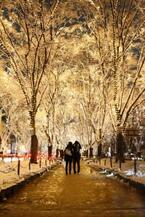光の和、想いをひとつに! 仙台の冬の風物詩『SENDAI 光のページェント』募金受付中