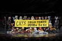 ミュージカル『キャッツ』大阪公演が千秋楽決定!