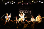 wacci、初の47都道府県ツアー開幕
