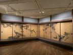 「松に孔雀図」など重要文化財の襖絵群の再現展示も 「円山応挙から近代京都画壇へ」開催中