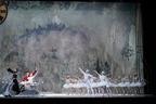 Kバレエ『くるみ割り人形』が今年も、コロナ禍で作品が果たす役割とは