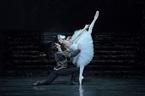 新国立劇場バレエ団『白鳥の湖』で華やかに開幕
