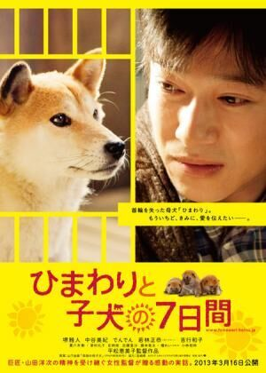 堺雅人&中谷美紀出演作『ひまわりと子犬の7日間』特報動画が公開