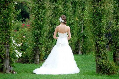ウェディングドレスを夢見ていたのに……「結婚式はしたくない」という彼。どうすれば?