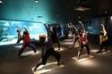水槽の魚を見ながらリフレッシュ! 閉園後の水族館でヨガレッスンを開催!