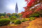 大好きなカレと秋を満喫!東京の「紅葉スポット」とっておき4選