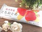 【ローソン】栃木県産「とちおとめ」はいちごの香りと甘酸っぱさが広がる♡