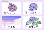 【心理テスト】紫から連想するものでわかる!あなたのフェチ診断