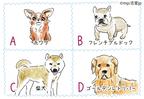 【心理テスト】実は警戒心アリ?!好きな犬種で分かるあなたの「人懐っこさ」