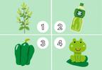 直感で選んで!【心理テスト】緑で連想するものでわかるあなたの「うっかり度」