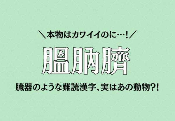 本物はカワイイのに…!【膃肭臍】臓器のような難読漢字、実はあの動物?!