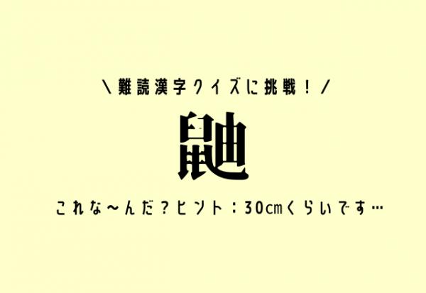 難読漢字クイズに挑戦!【鼬】これな~んだ?ヒント:30㎝くらいです…